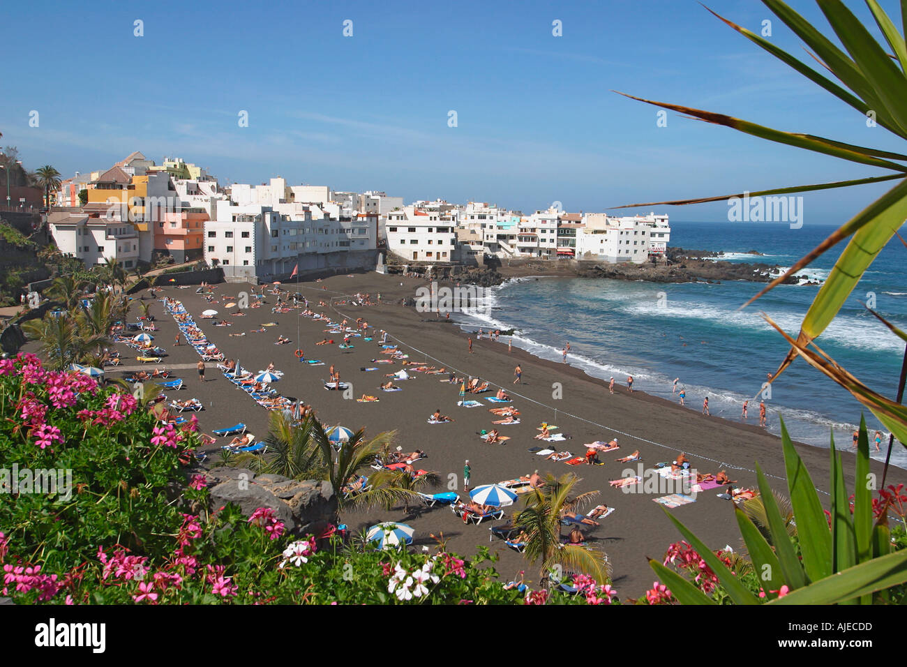 Playa jardin beach puerto de la cruz tenerife canary islands stock photo royalty free image - Playa puerto de la cruz tenerife ...
