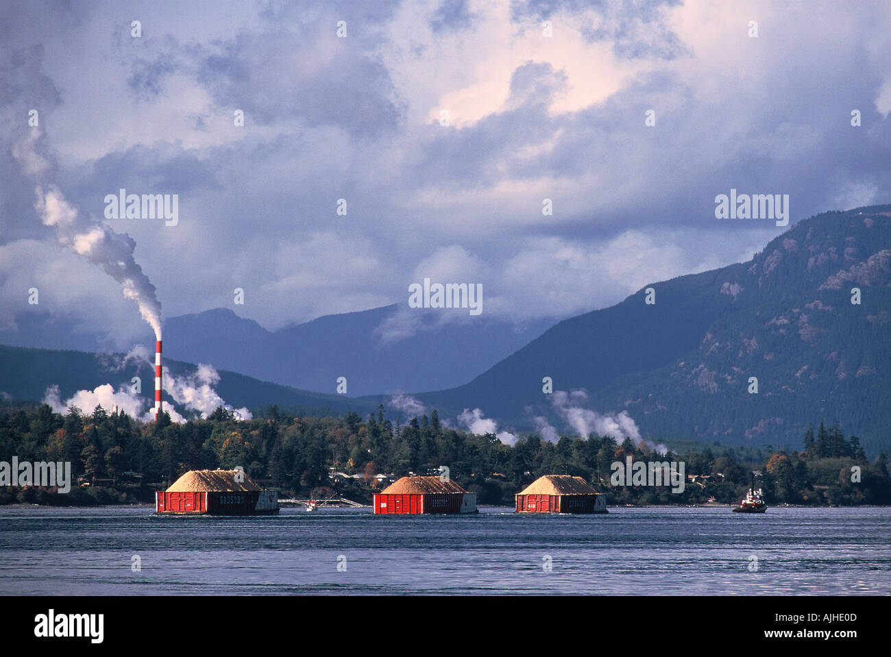 Stock Photo  Tug Boat And Barges Heading For Paper Mill Elk Falls Campbell  River British Columbia Canada
