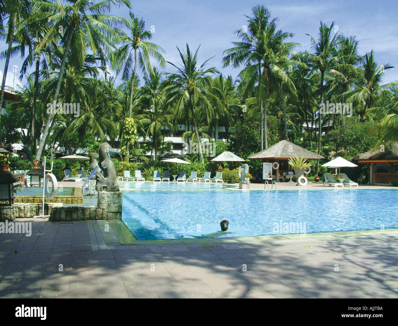 Panoramic View Of Palm Trees Around A Swimming Pool Stock Photo Royalty Free Image 4817081 Alamy