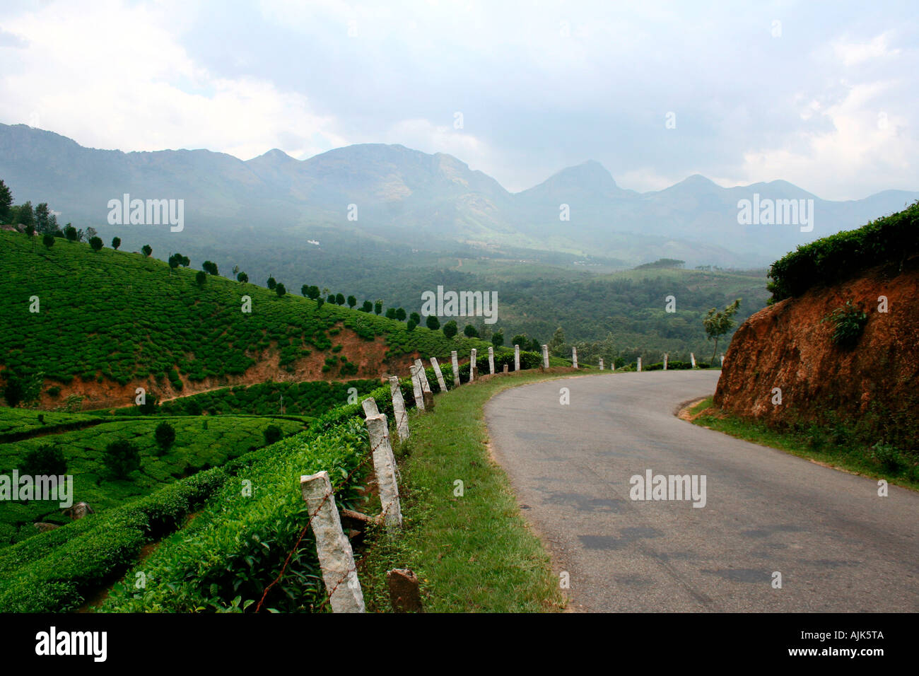 My favourite hill station in india