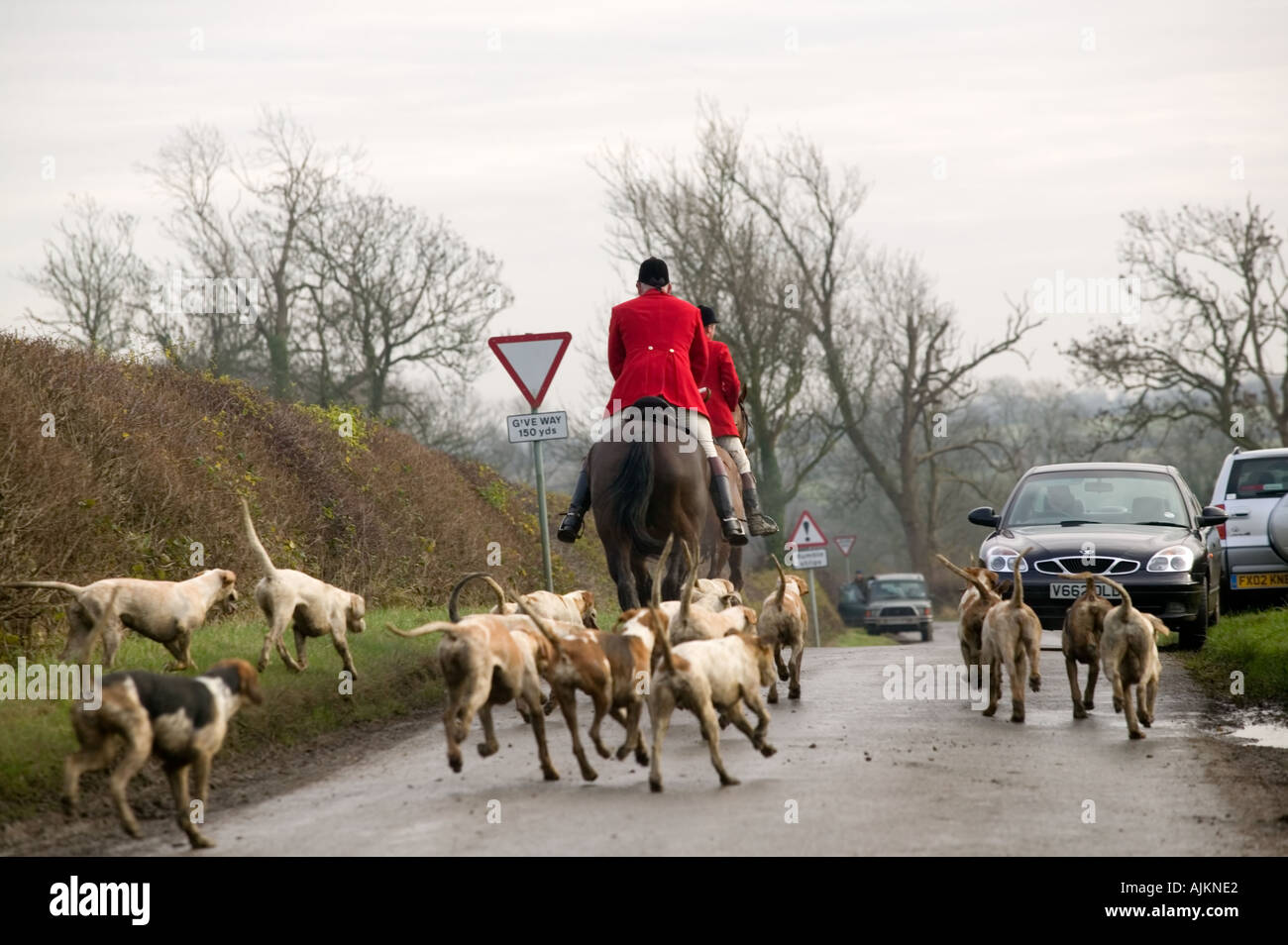 hunting with hounds The sport of fox hunting with hounds in britain, from its beginnings in the 16th century to the hunting act 2004.