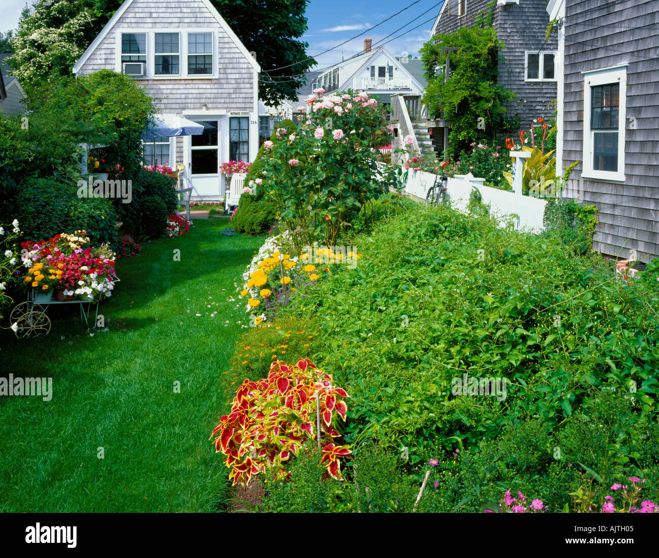 Cape Cod National Seashore, MA: Flower Garden With