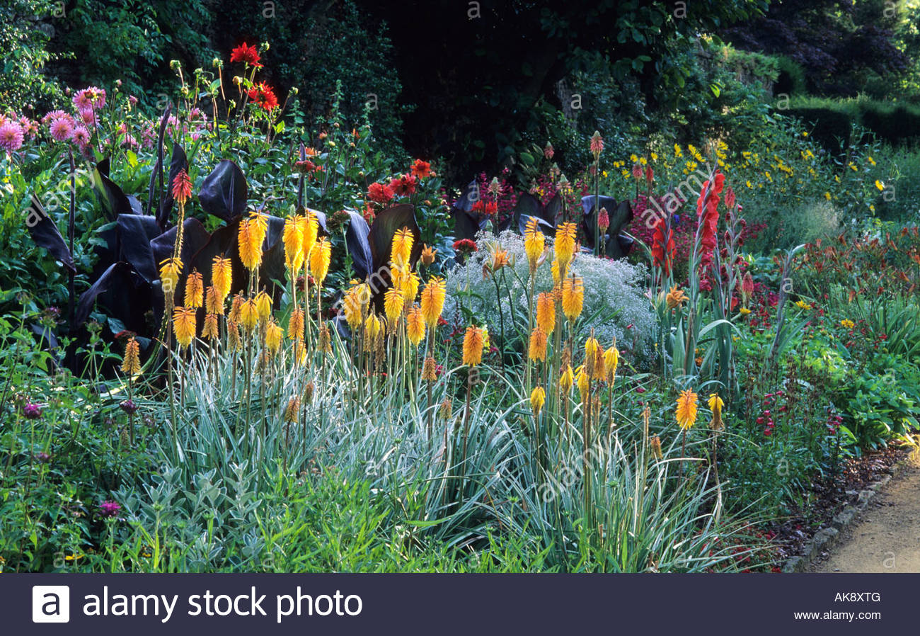 Munstead Wood Surrey Gertrude Jekyll Garden Main Flower Hot Colour Stock Photo Royalty Free
