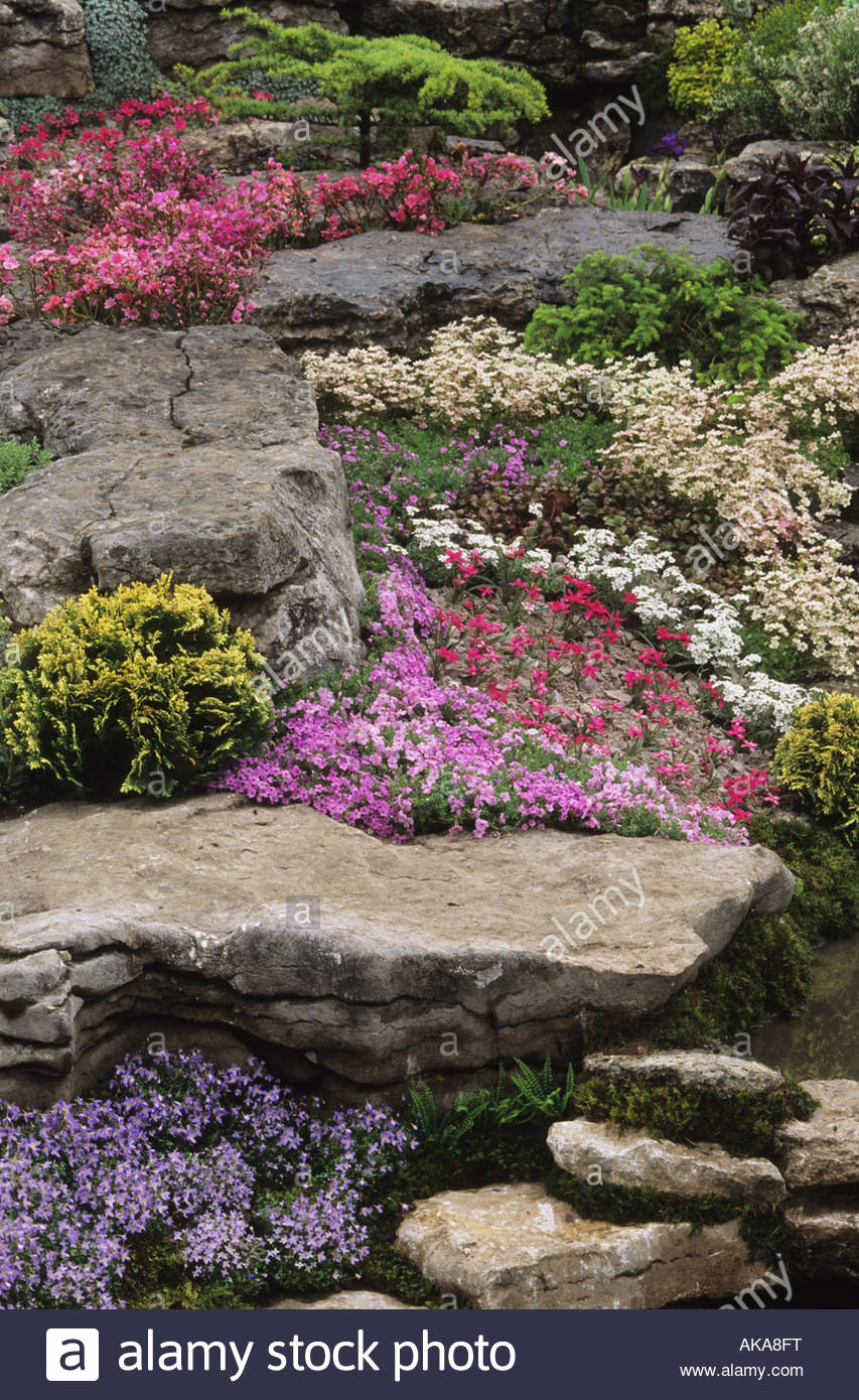 Chelsea Flower Show 1994 Design Peter Tinsley Alpine Rock