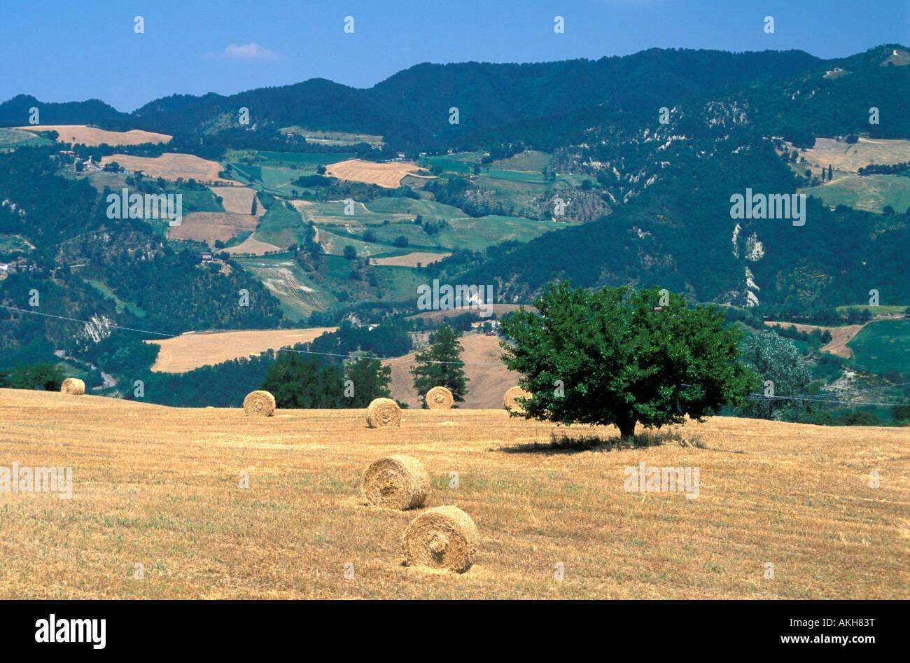 Countryside, San Piero in Bagno, Emilia Romagna, Italy Stock Photo ...