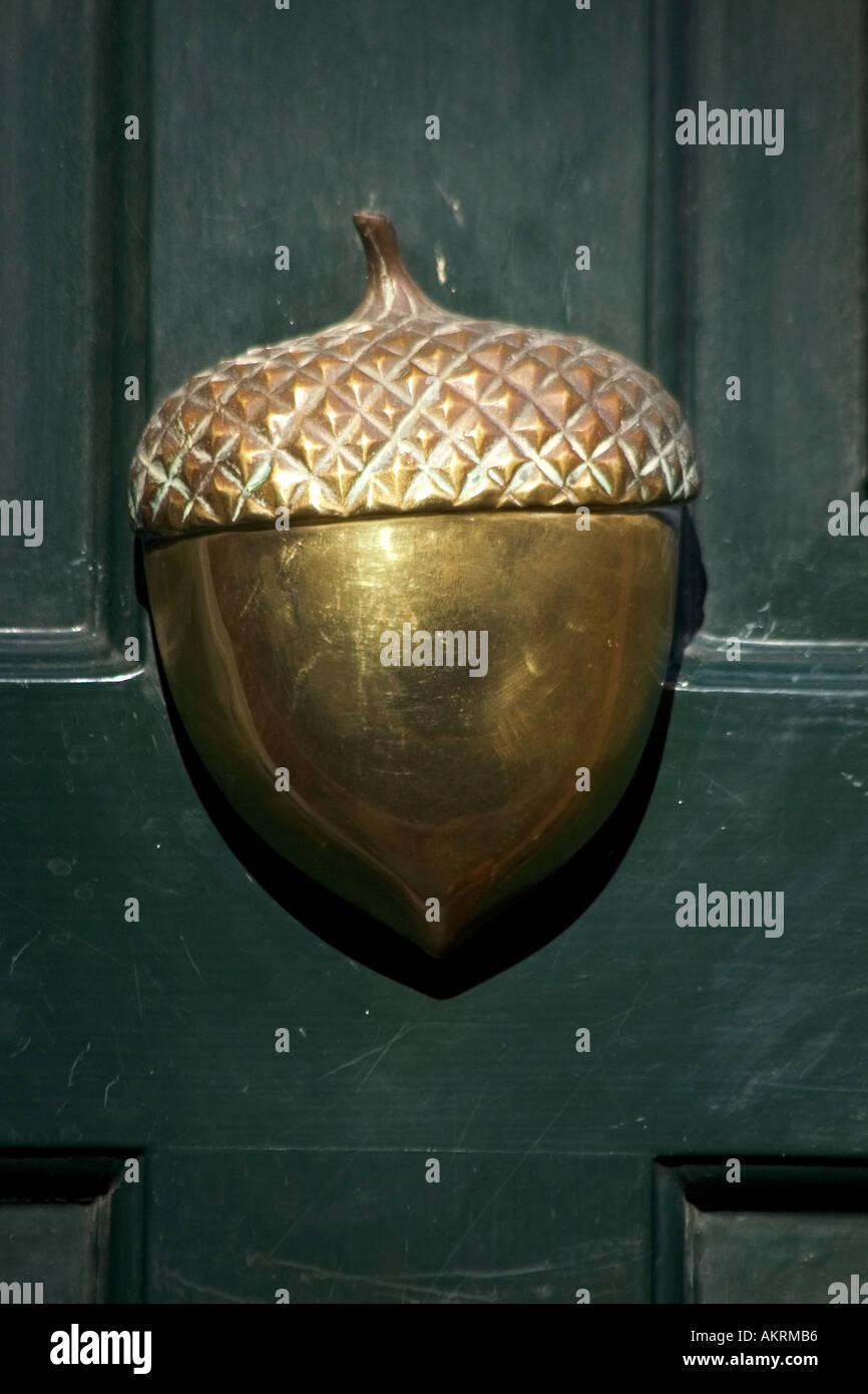 Brass Acorn Door Knocker on Beacon Hill house Boston Massachusetts United States of America USA & Brass Acorn Door Knocker on Beacon Hill house Boston Massachusetts ... Pezcame.Com