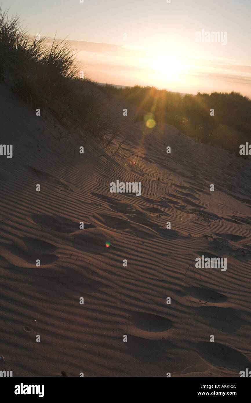 sunset on a beach with footprints in the sand Stock Photo ...