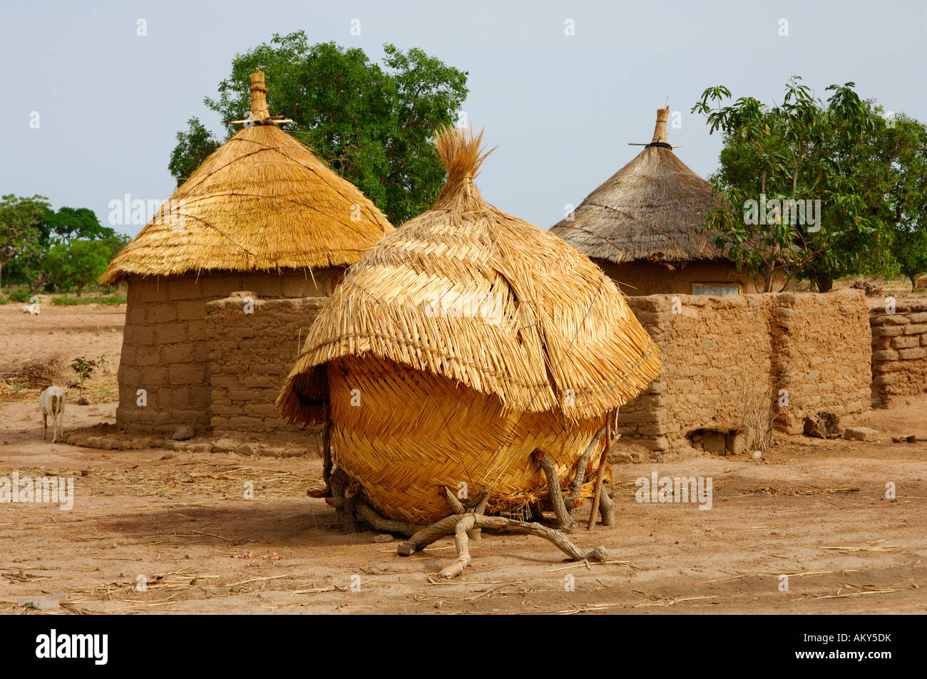 African homestead with granary burkina faso stock photo for Free homestead