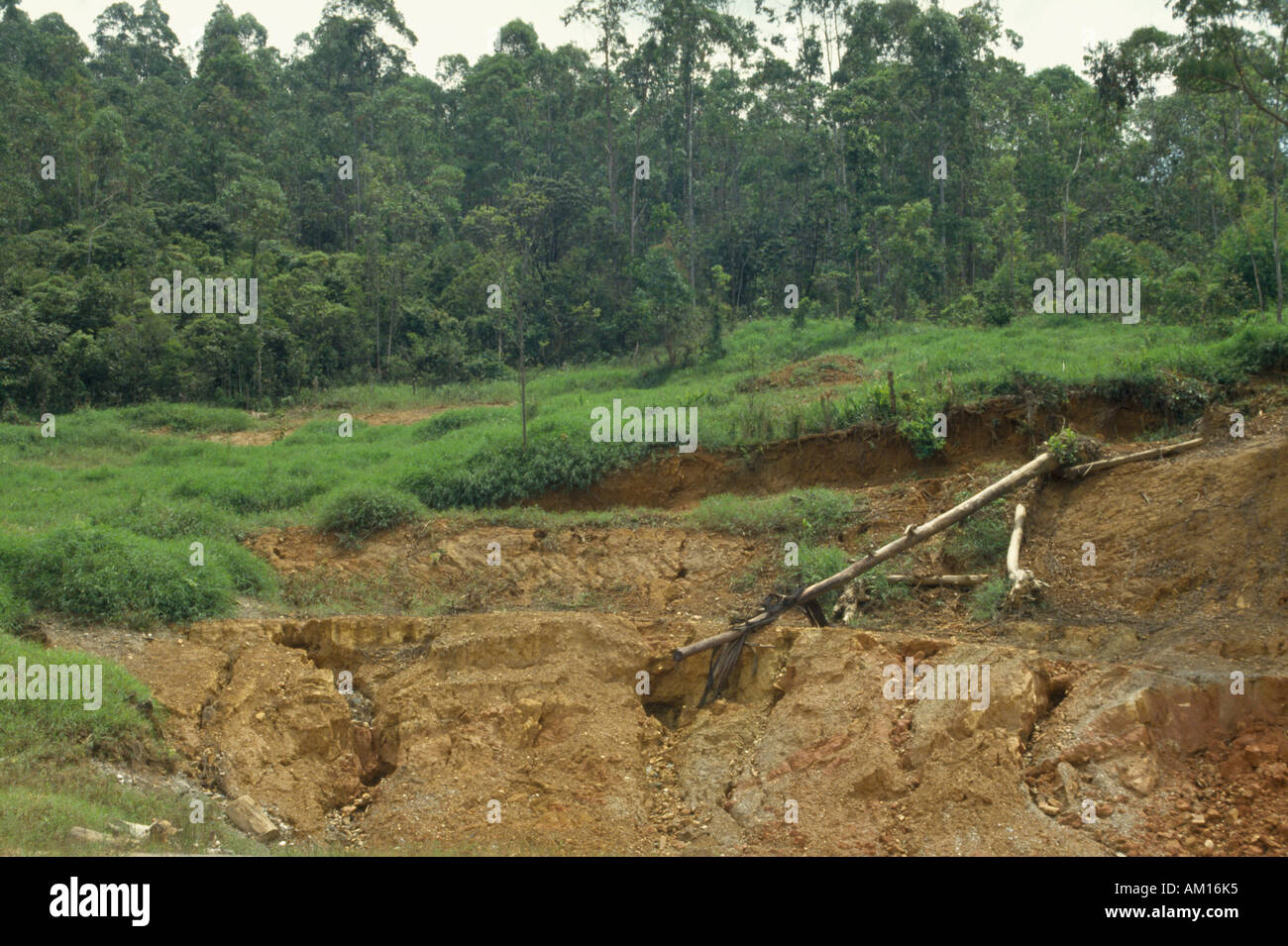 Brazil south america minas gerais soil erosion caused by for Soil erosion causes