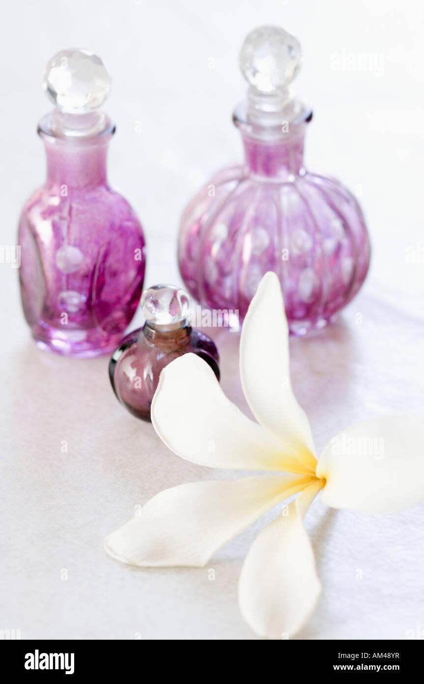 Fancy white flower analgesic picture collection images for wedding white flower analgesic oil images flower decoration ideas mightylinksfo