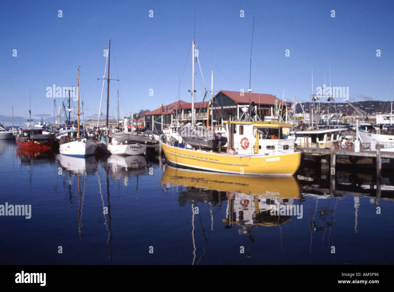 fishing boats in victoria dock hobart tasmania australia stock