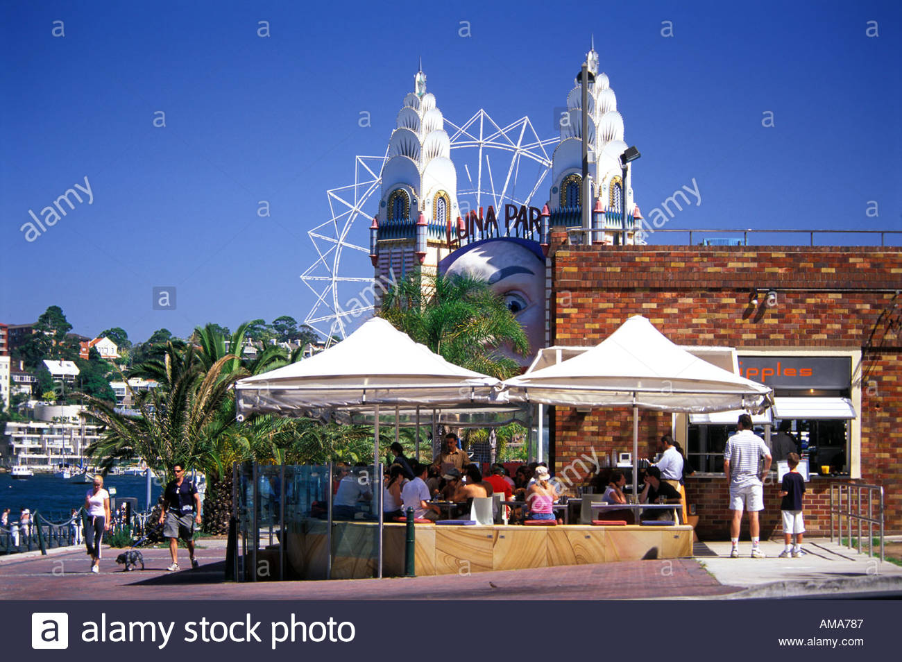 outdoor cafe olympic swimming pool north sydney with luna park in background sydney australia - Olympic Swimming Pool Background