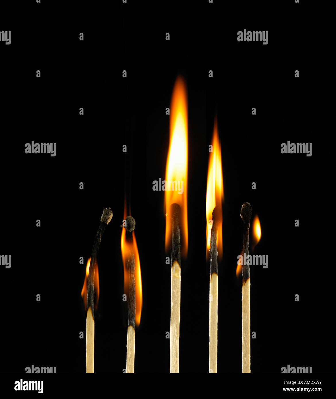 Progress Energy Stock Quote: ROW OF FIVE MATCHES BURNING IN SEQUENCE Stock Photo
