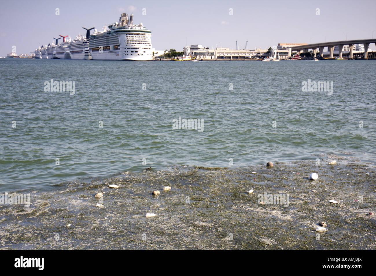 Miami Florida Biscayne Bay Cruise Ships Port Of Miami Polluted - Cruise ship port in miami