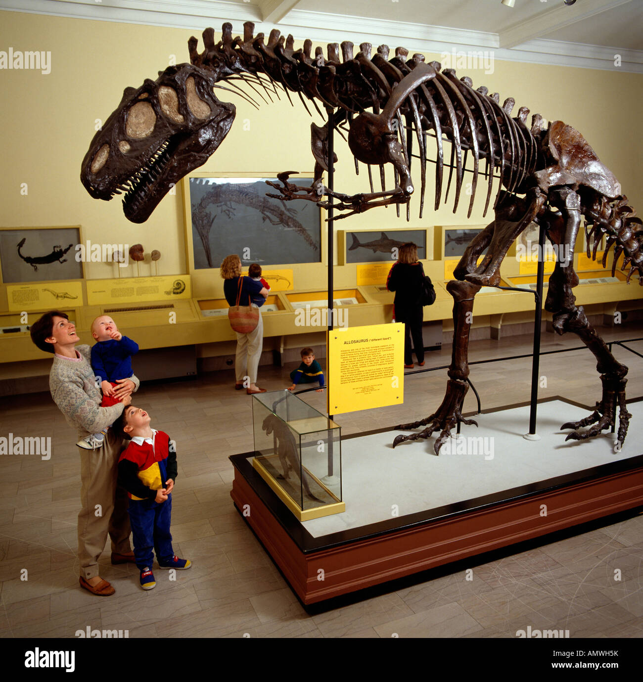 Dinosaur Hall At The Carnegie Museum Of Natural History - Historical museums in usa