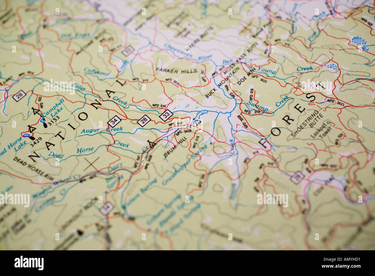 Paper Map Of National Forest Lands With Roads Oregon State USA - Map of oregon state usa
