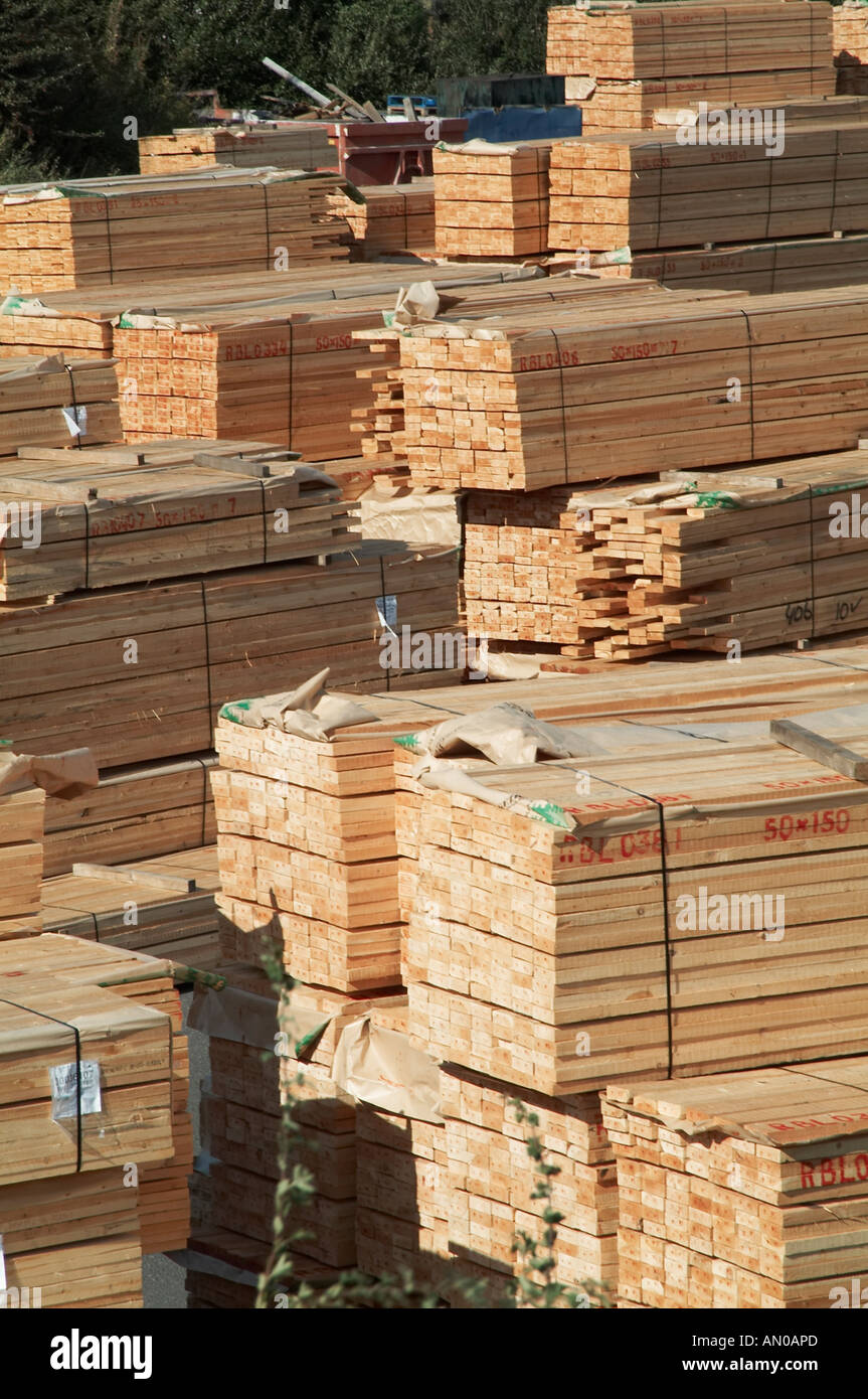Timber wood lumber yard pine tree deforestation Pine tree timber