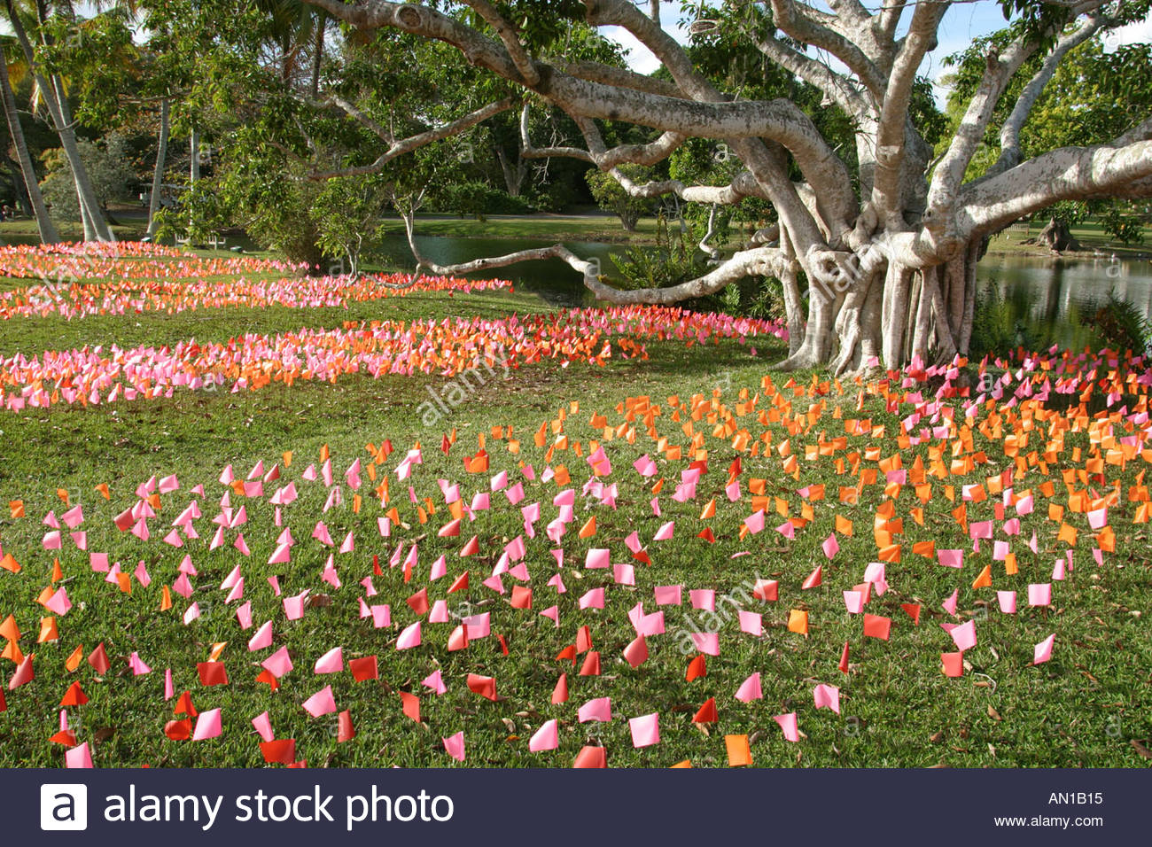 Coral Gables Miami Florida Fairchild Tropical Botanic Garden Flower Square  Art Installation Flags Represent Brushstrokes Ficus Tree