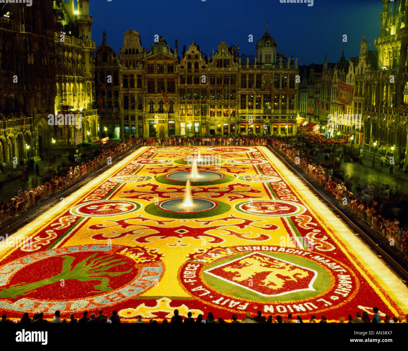 grand place floral carpet tapis des fleurs night view stock photo royalty free image. Black Bedroom Furniture Sets. Home Design Ideas