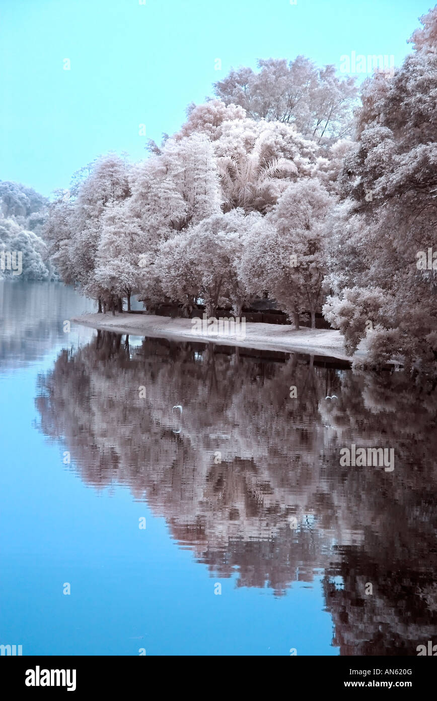 Digital Infrared Photography Natural Scenes Still Water ...