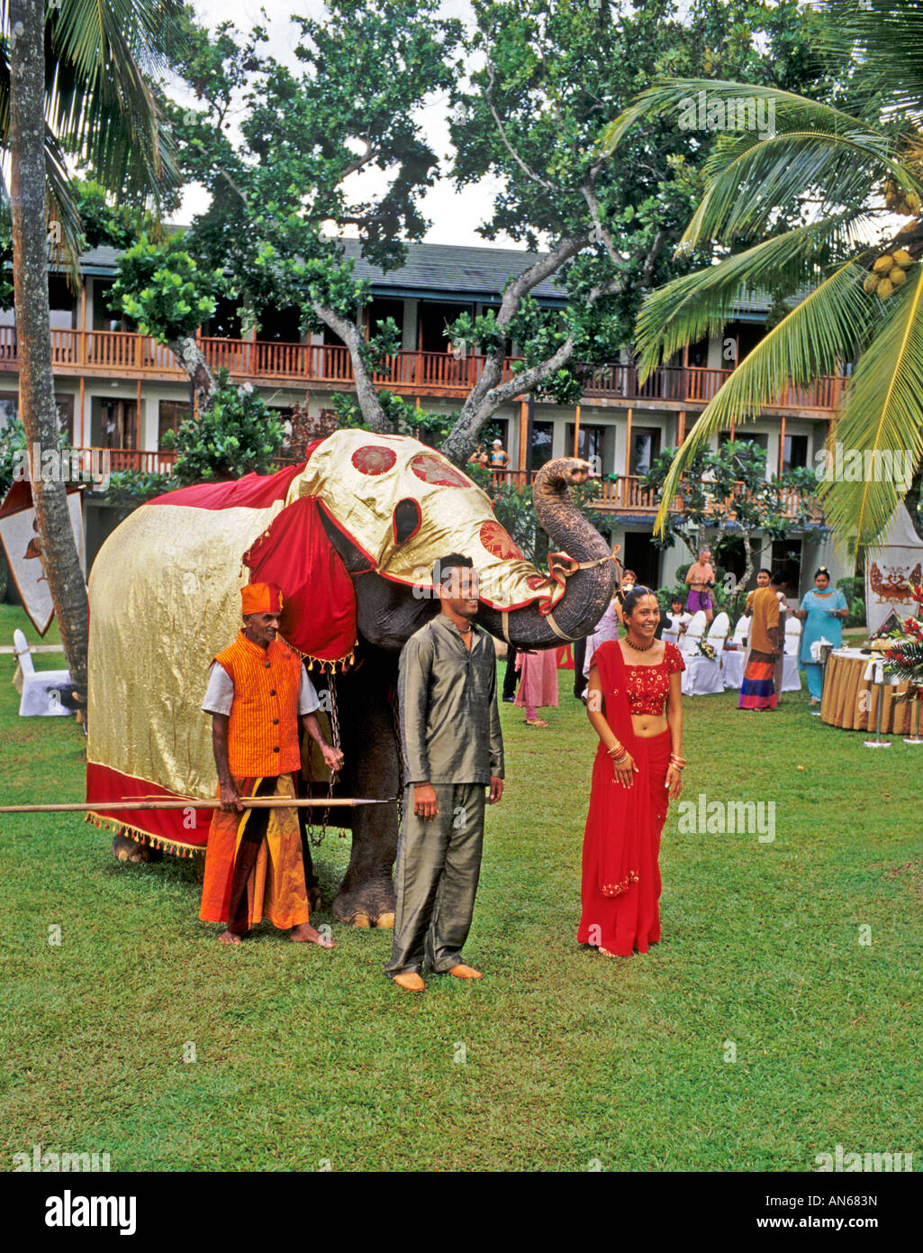 Inspiring Elephant In Ceremonial Dress At A Wedding In Bentota Beach Hotel  With Licious Elephant In Ceremonial Dress At A Wedding In Bentota Beach Hotel Garden Sri  Lanka With Bride And Groom With Appealing Garden Obelisks Also Secret Garden Preston In Addition Train Show Botanical Garden And Dog Garden Ornaments Uk As Well As Grow Your Own Herb Garden Additionally Wholesale Garden Benches From Alamycom With   Licious Elephant In Ceremonial Dress At A Wedding In Bentota Beach Hotel  With Appealing Elephant In Ceremonial Dress At A Wedding In Bentota Beach Hotel Garden Sri  Lanka With Bride And Groom And Inspiring Garden Obelisks Also Secret Garden Preston In Addition Train Show Botanical Garden From Alamycom