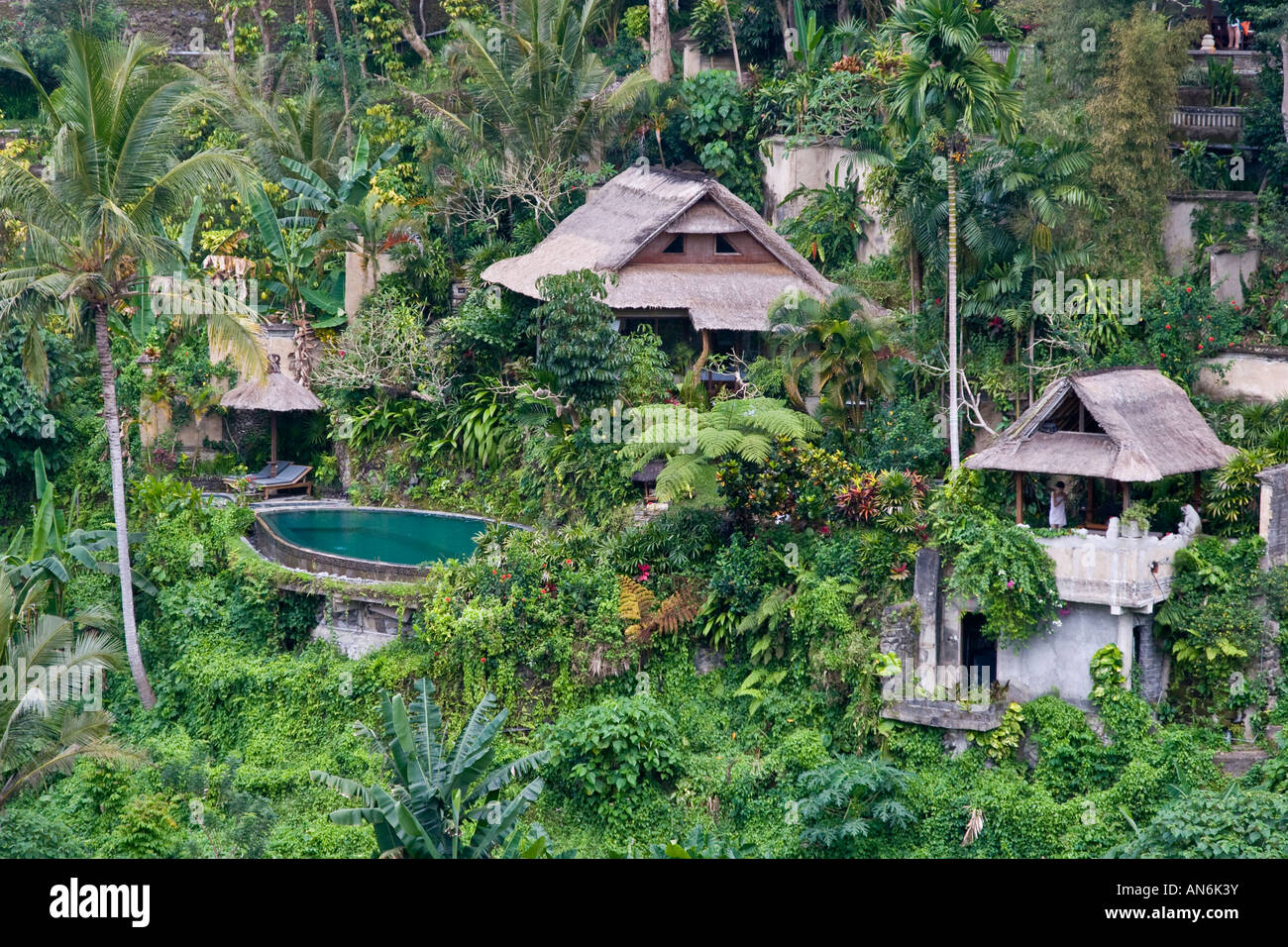 Luxury hotel set in the jungle ubud bali indonesia stock for Top hotels in ubud bali