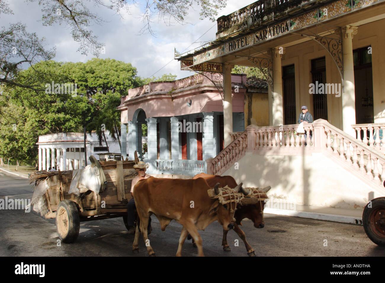 oxen cart outside hotel saratoga san diego de los baos cuba