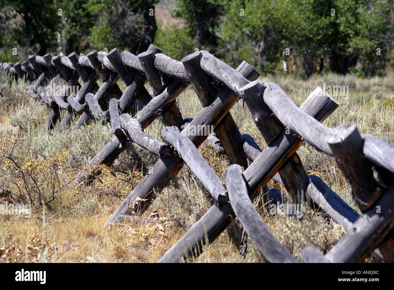 Wooden post fence in front of the grand tetons wyoming