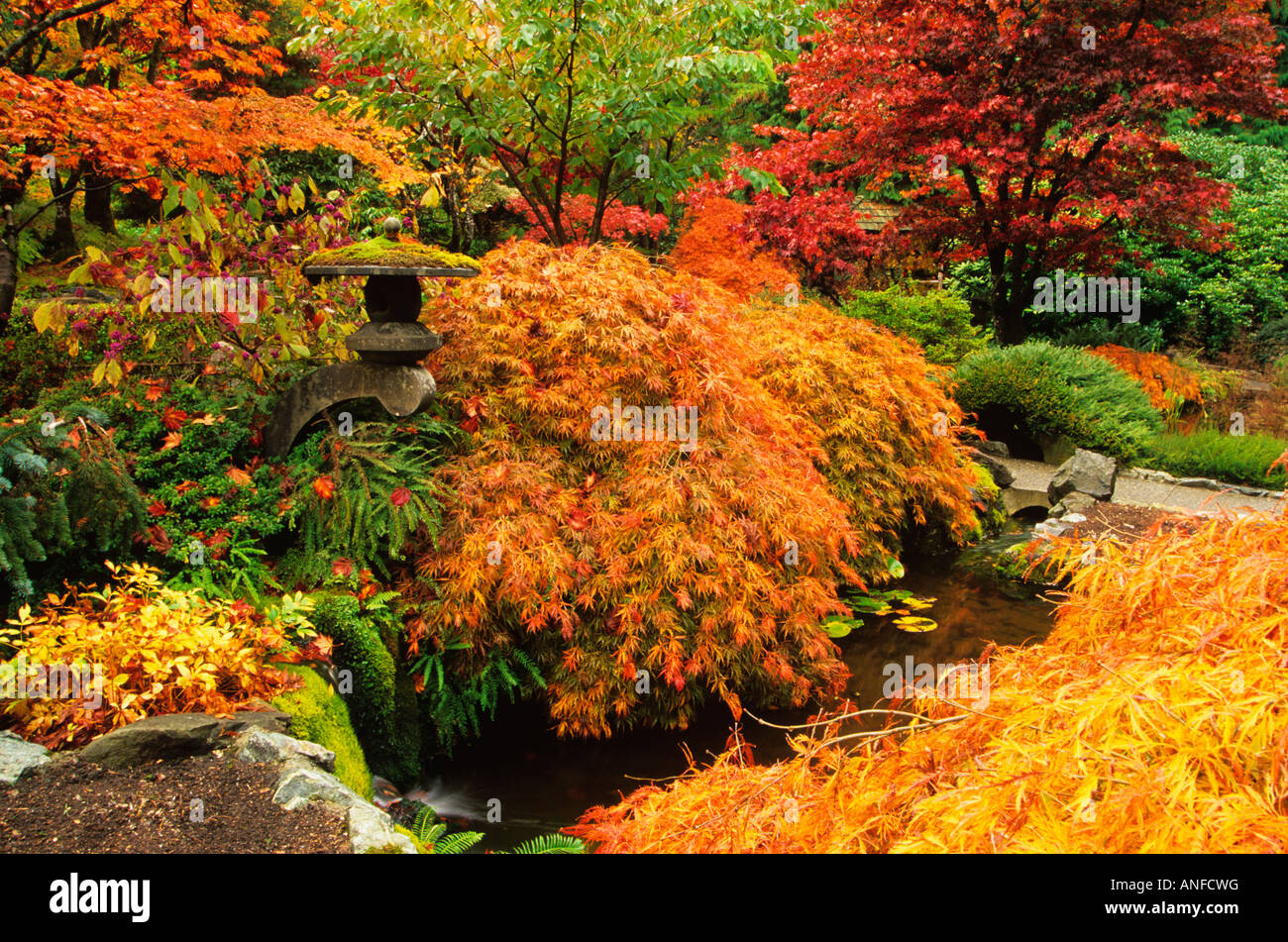Autumn colors in butchart gardens victoria vancouver island autumn colors in butchart gardens victoria vancouver island british columbia canada thecheapjerseys Choice Image