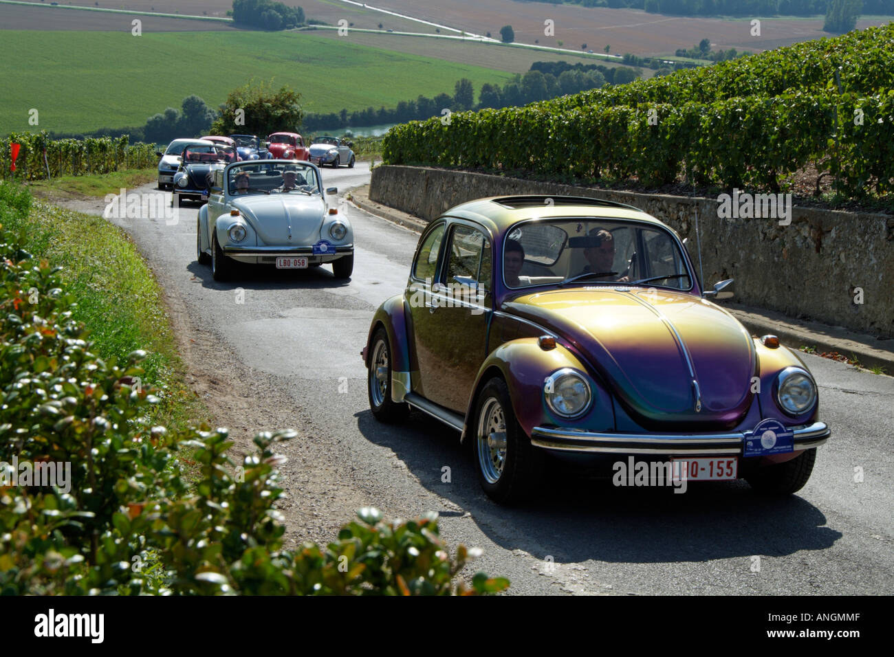 Vw Beetle Classic Cars On Tour In The Champagne Region Of France