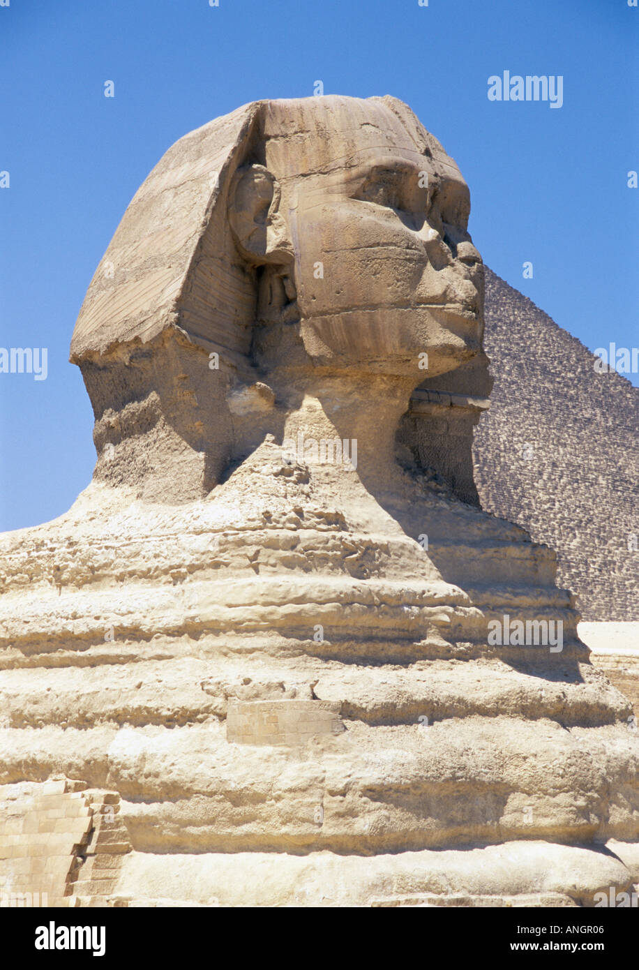 free sphinx of giza - photo #35