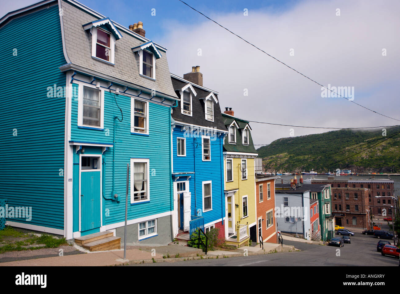The charming houses in downtown st john 39 s aka jelly bean for Newfoundland houses