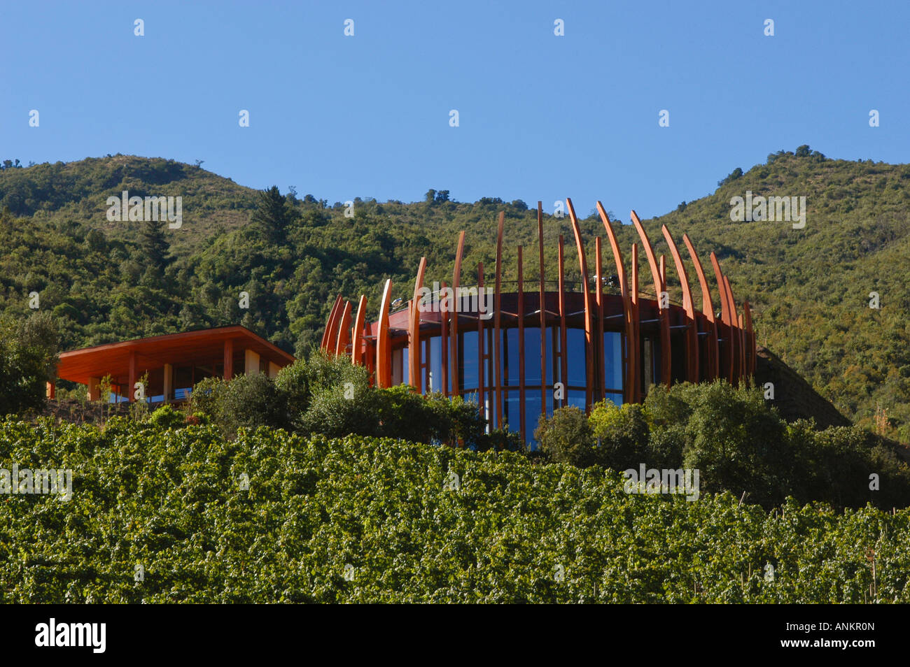 Clos apalta winery of casa lapostolle colchagua chile for Casa lapostolle