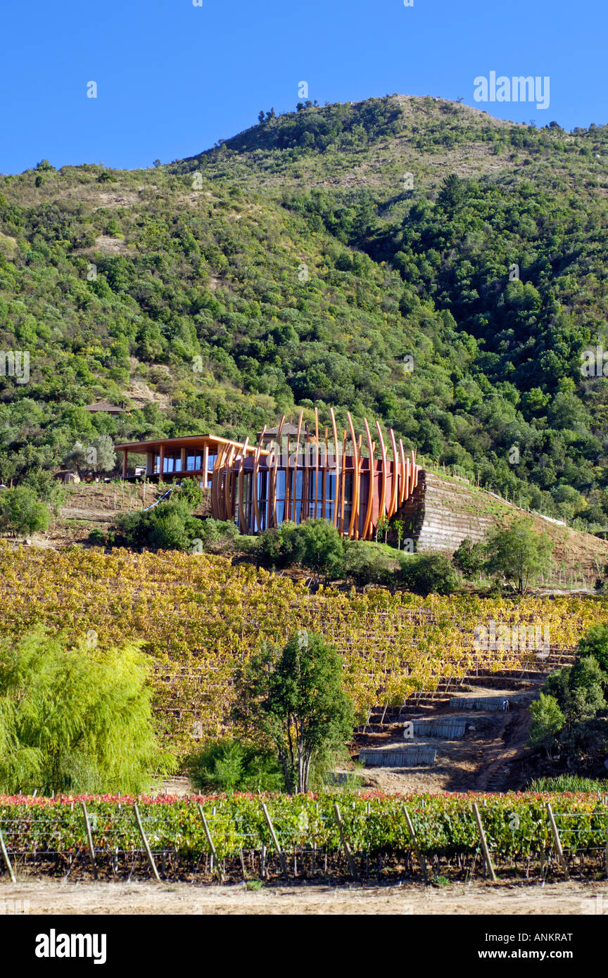 Clos apalta winery of casa lapostolle colchagua valley for Casa lapostolle