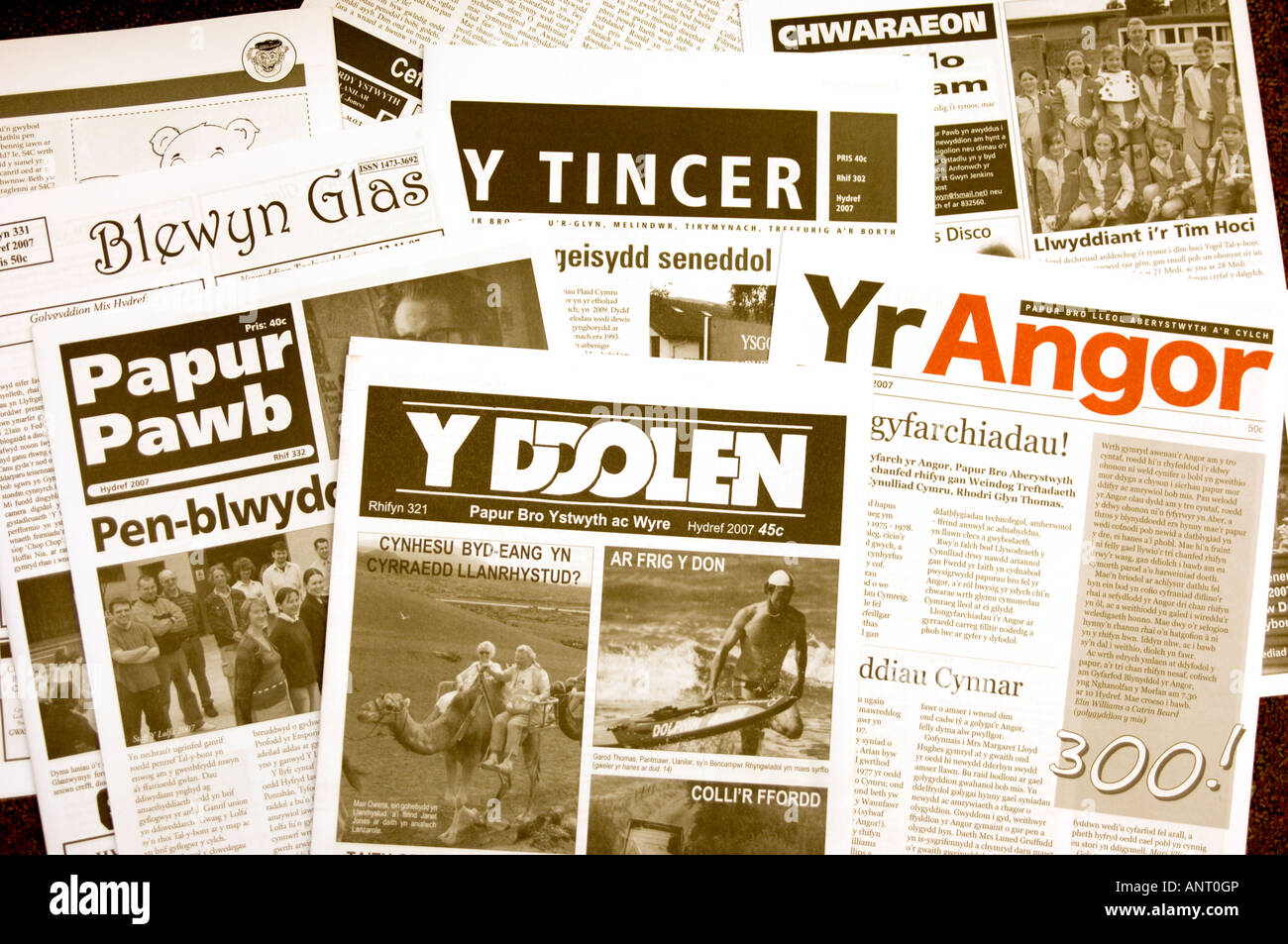 ebook A Survival