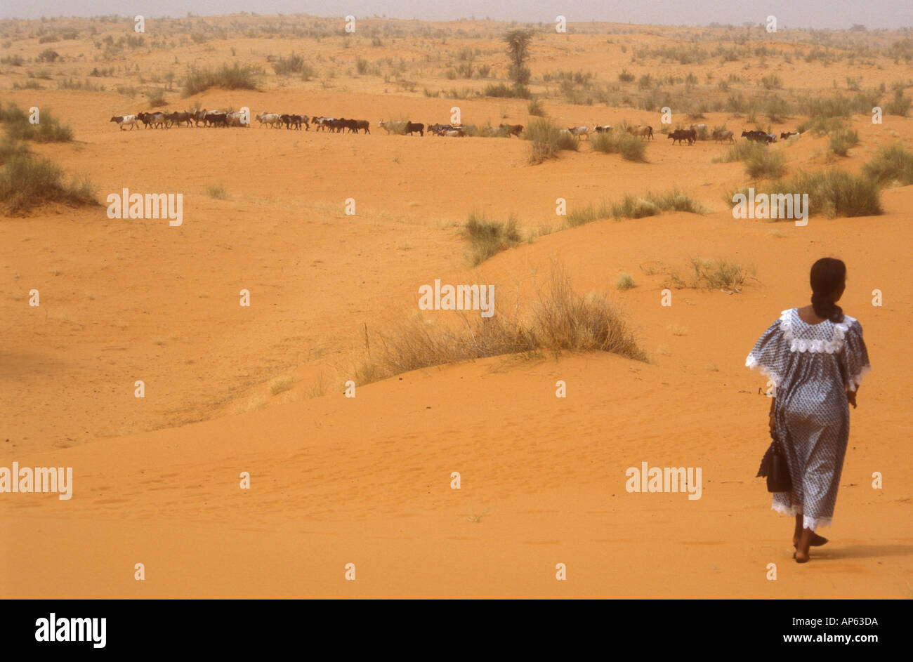 Woman Walking In Sahara Desert Burkina Faso West Africa