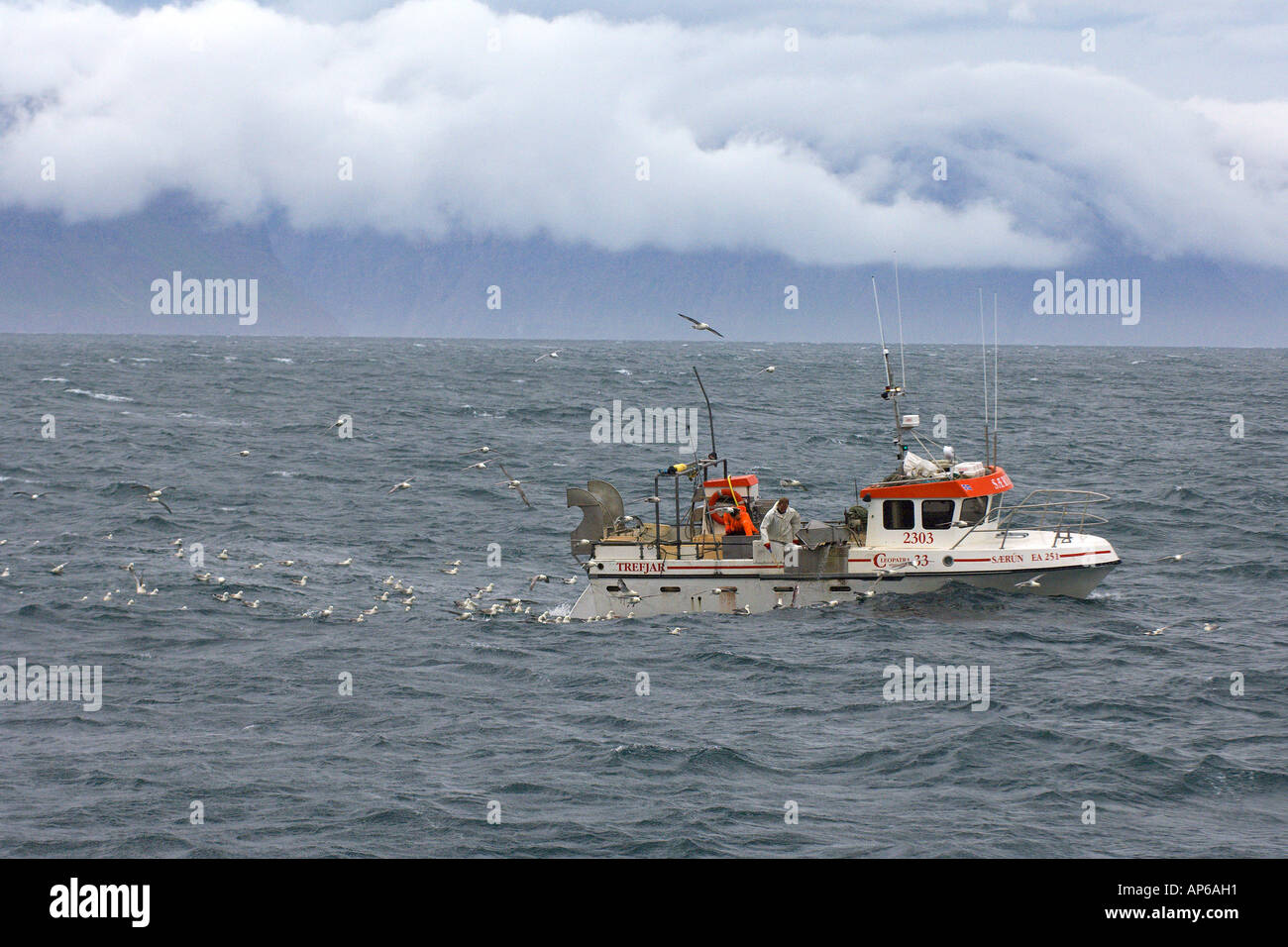 Icelandic long line fishing vessel off north coast of for Long line fishing
