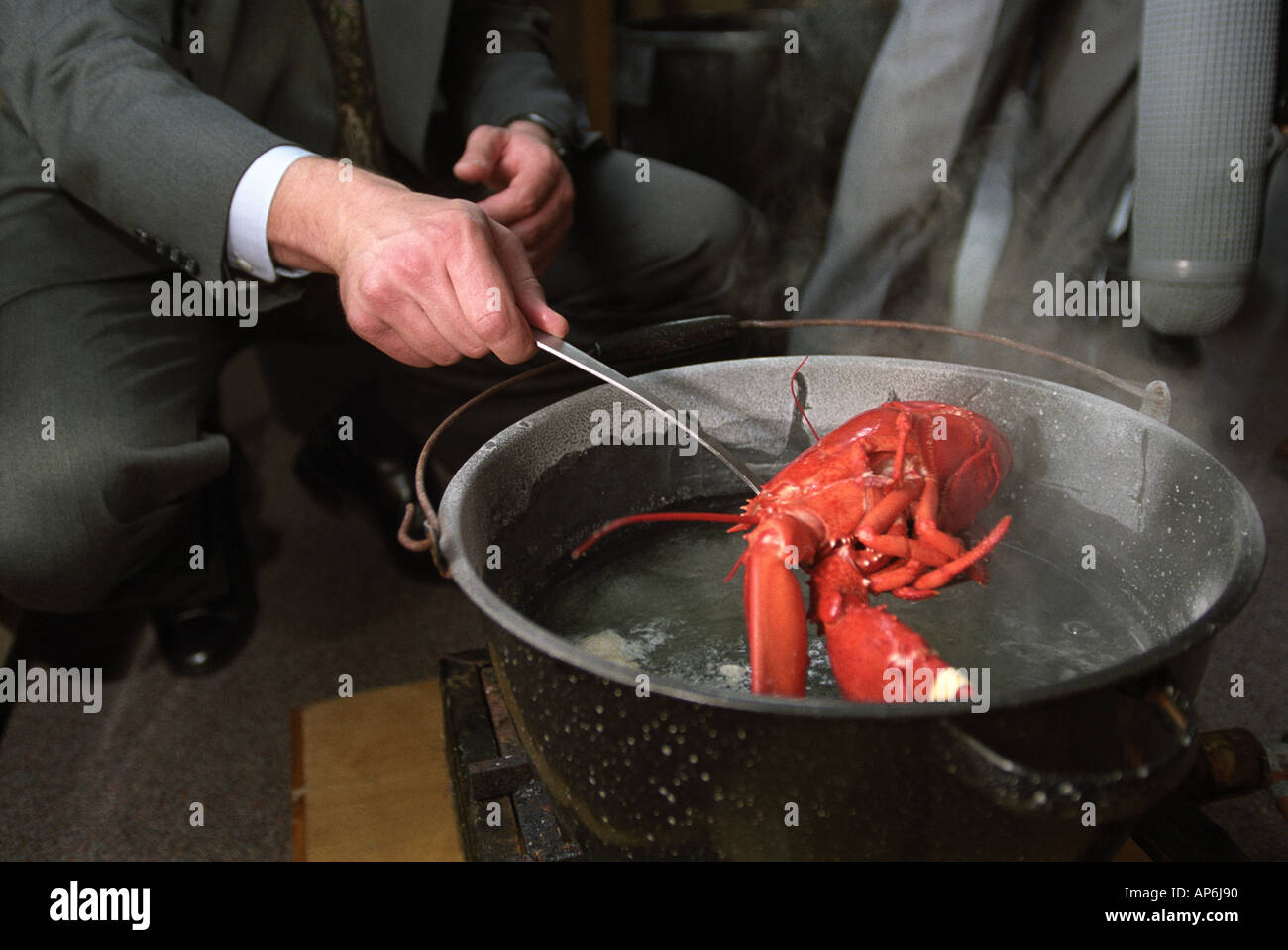 J C Lobster Pot A LOBSTER IN A POT OF ...