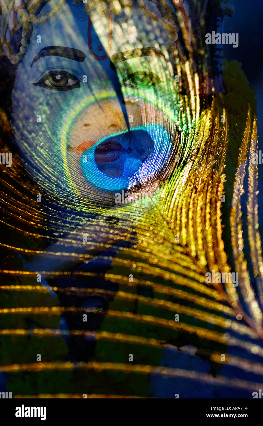 Lord krishna statue and peacock feather montage on white india lord krishna statue and a peacock feather montage against black stock photo biocorpaavc Gallery