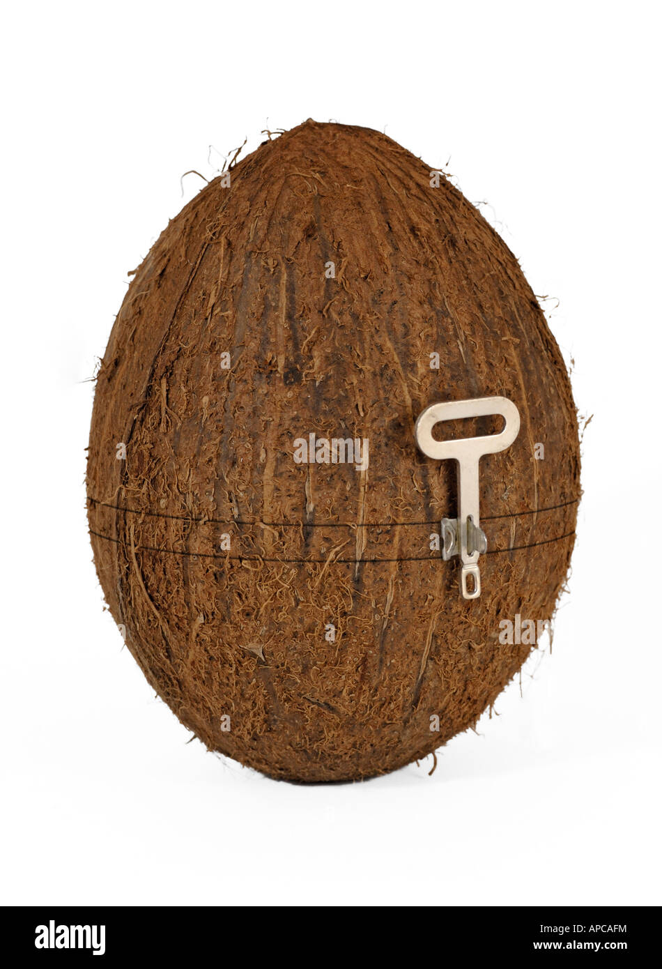 Coconut with a built in tin can opener symbol of making it coconut with a built in tin can opener symbol of making it easy new or alternative way of thinking etc biocorpaavc
