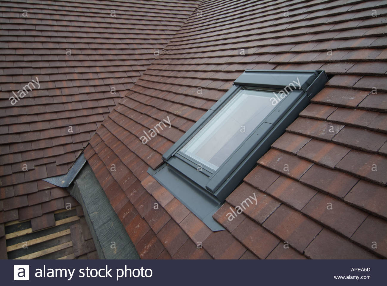 Detached House Construction Roof Covering Of Marley Concrete Plain Tiles  Showing Velux Roof Light Essex England