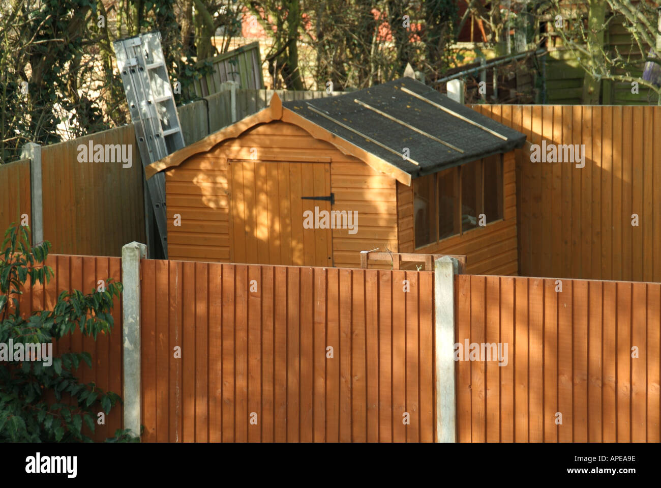 Concrete fencing post stock photos concrete fencing post stock back garden timber fence panels with concrete posts and wood garden shed with ladder stock baanklon Images