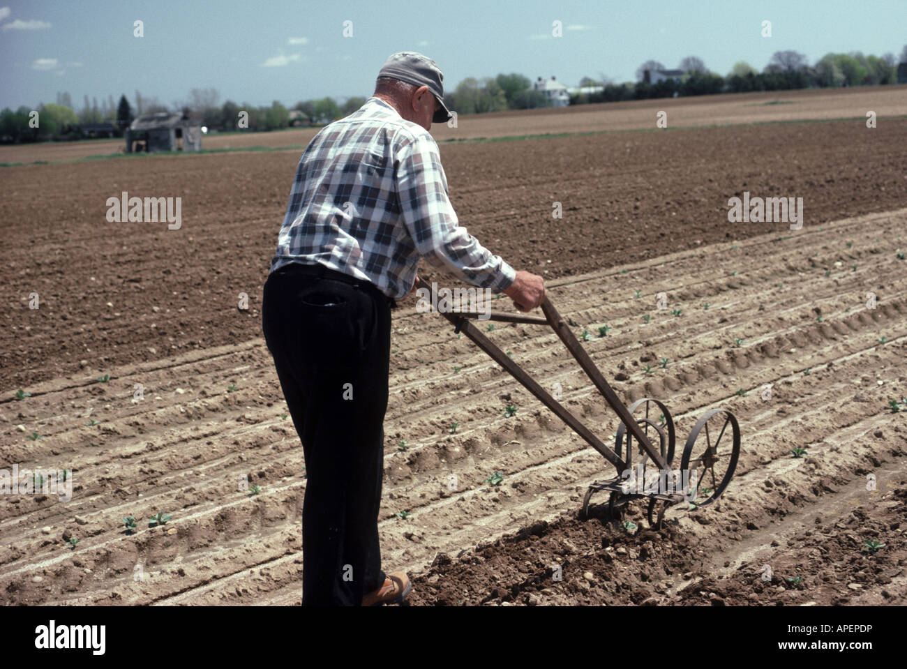 soil research paper International soil tillage research organization  of the journal of soil and tillage research:  not be included in a later paper.