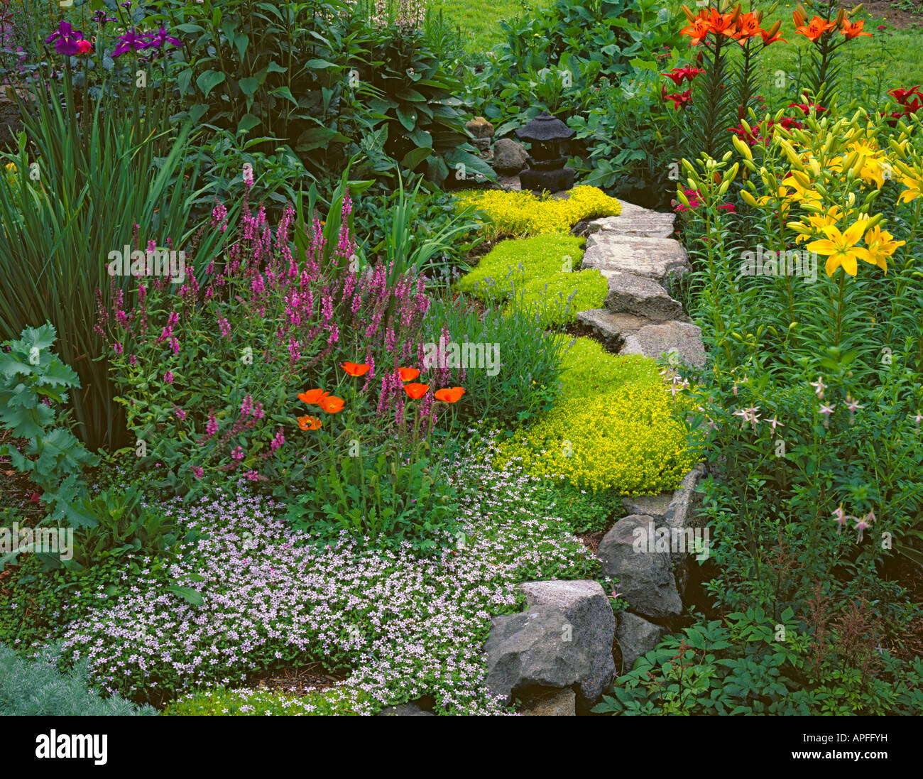 Vashon Island Wa A Garden Bed Filled With Flowers And Ground Cover