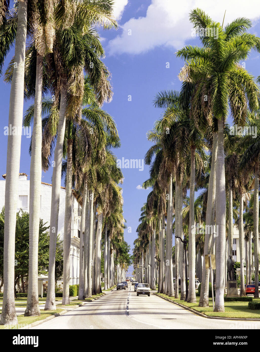Geography / Travel, USA, Florida, Palm Beach, Holiday