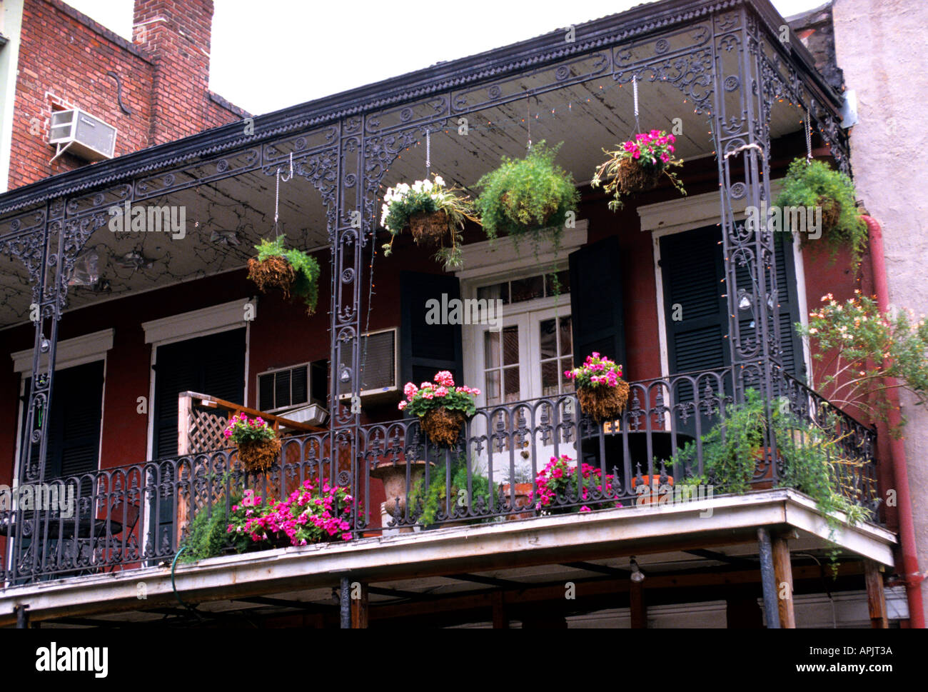 New orleans bourbon street balcony flowers house stock for The balcony cafe