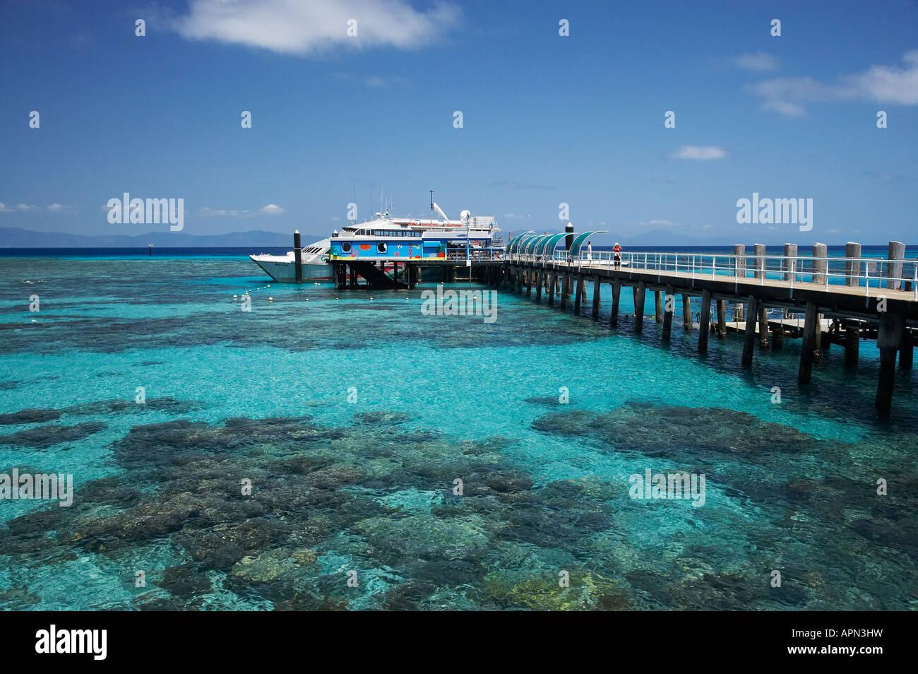Green Island Resort Snorkeling