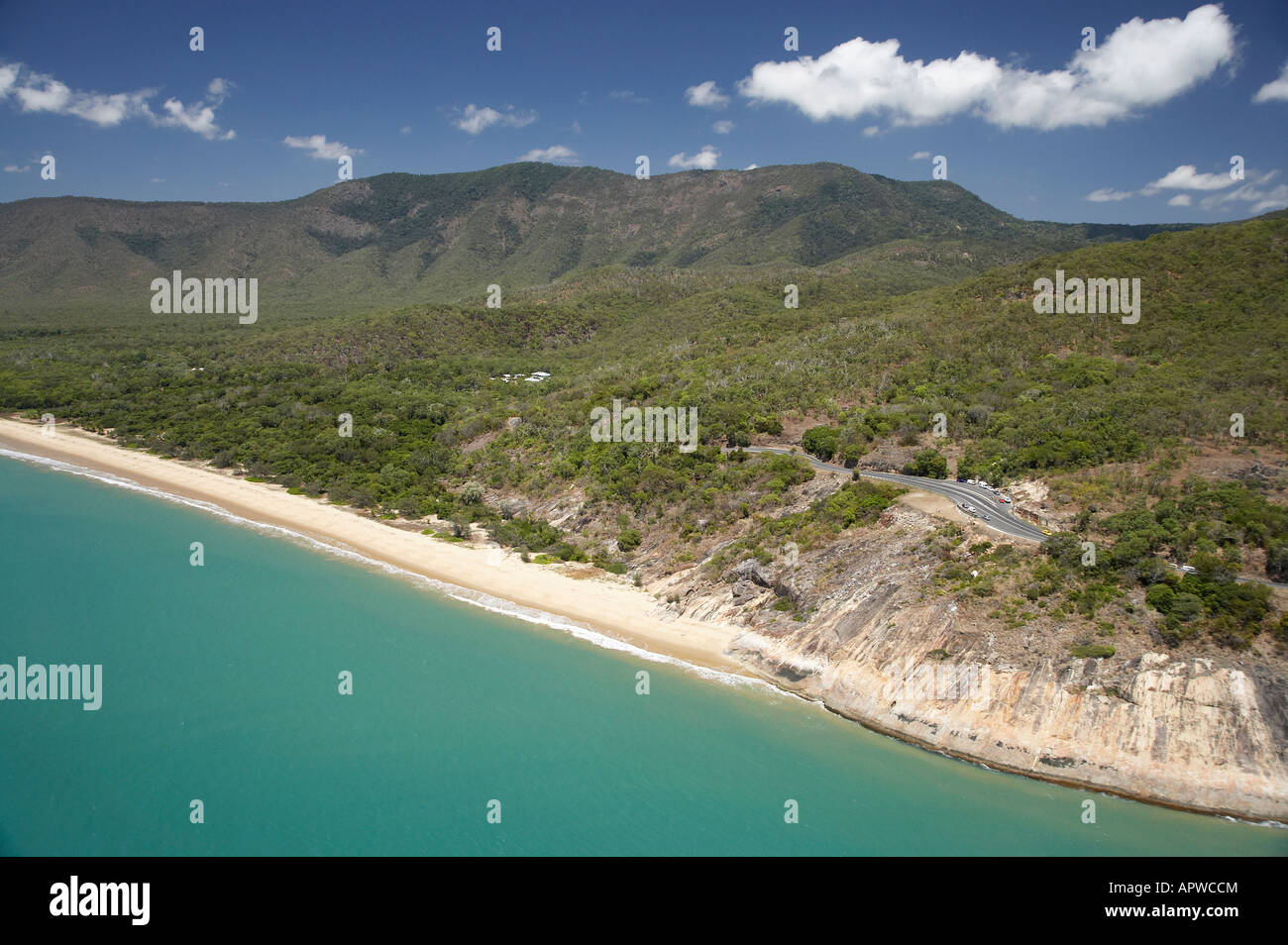 wangetti beach - photo #16