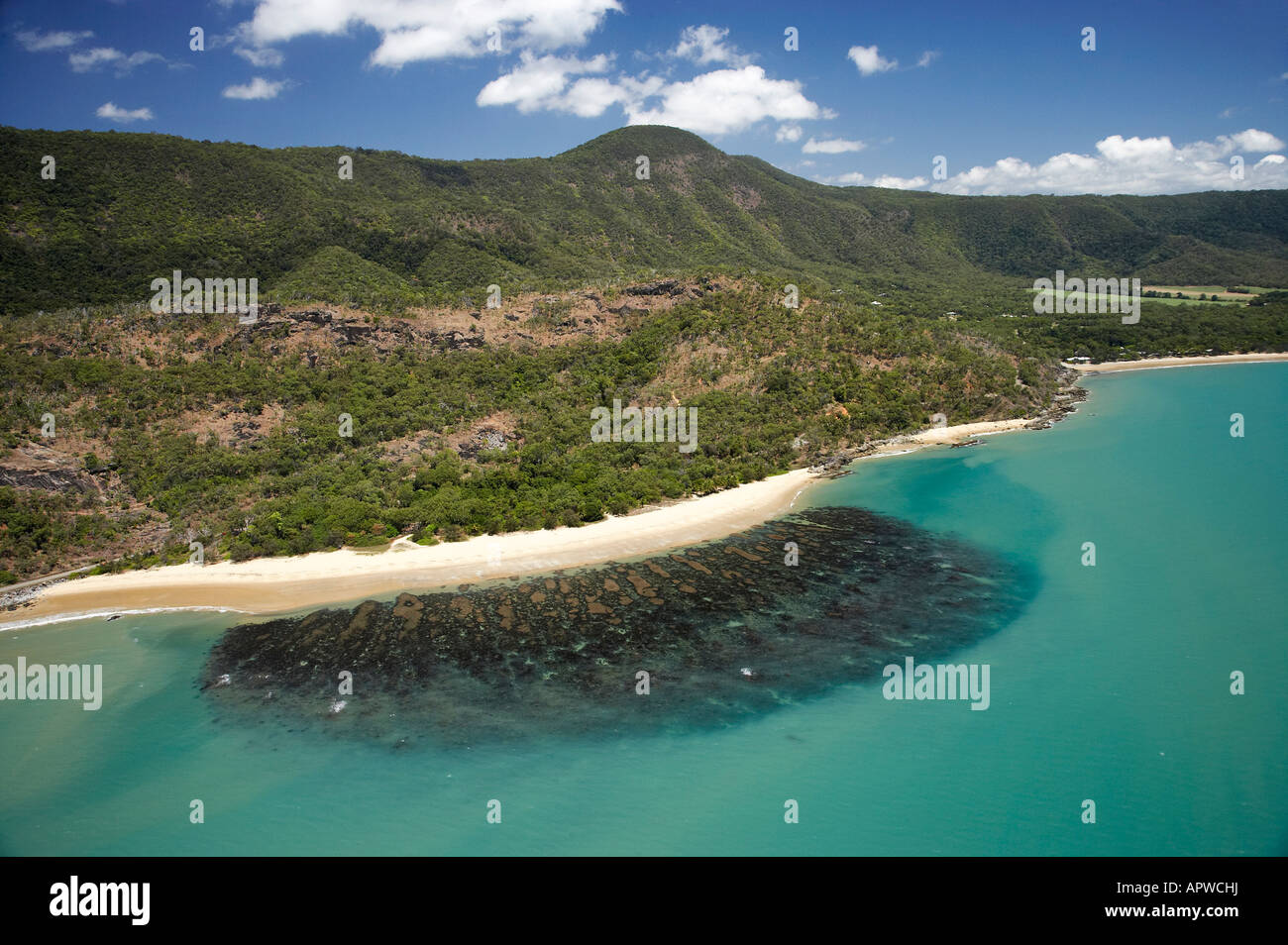 Pretty Beach Little Reef Beach Oak Beach North Queensland Australia Aerial
