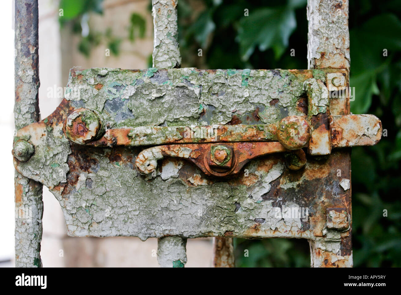 Painted Rusty Old Garden Gate Latch